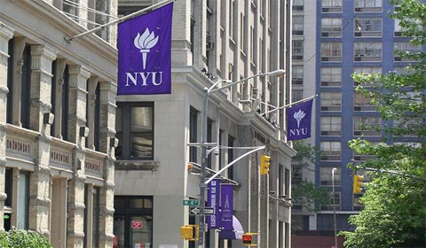NYU is Tops Among Gay-Friendly Schools, Says Princeton Review