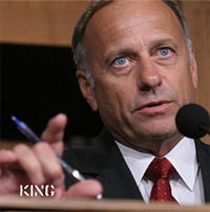 Steve King Says Gay Marriage a Step to Socialism