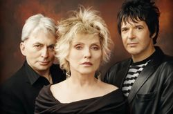 Blondie-2011-colour