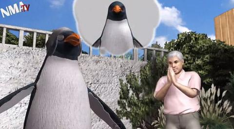 Penguin_bachmann