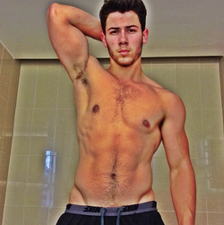 Nick Jonas Shirtless Selfie