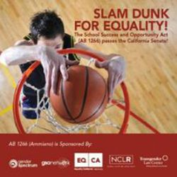 Slam Dunk for Equality