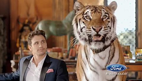 Tiger_franco
