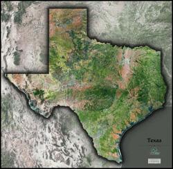3_texas