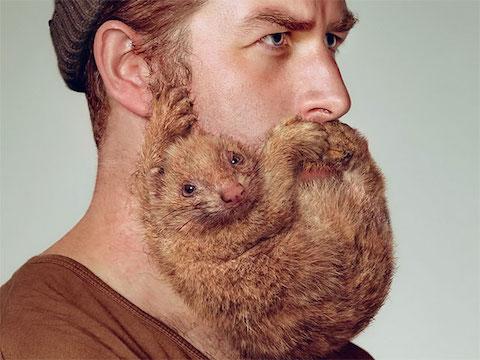 Schick Beard Mammal campaign