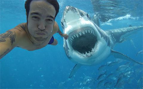 លទ្ធផលរូបភាពសម្រាប់ strange selfie