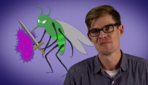 MosquitoWarrior