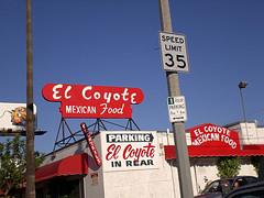 Elcoyote